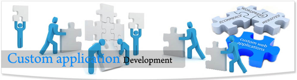 Online Application Development Lucknow